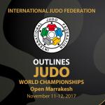 世界無差別選手権2017